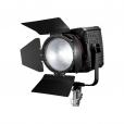 LED Fresnel Light CN-400F / 5600K